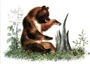 Бианки рассказы о животных