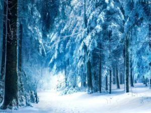 Зимние пословицы