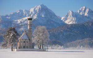 Снегирь прилетит – о зиме известит